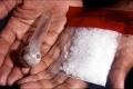Tiến trình phá hoại của ma túy đá đến từng bộ phận cơ thể